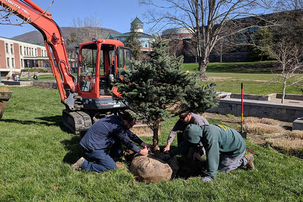 On Arbor Day, welcome new trees donated to Appalachian
