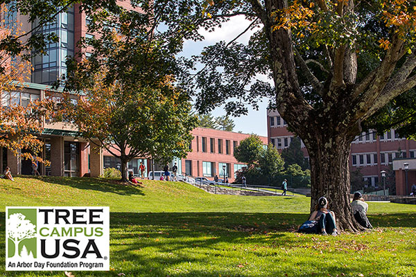 Appalachian — a Tree Campus since 2014 — welcomes new trees to campus